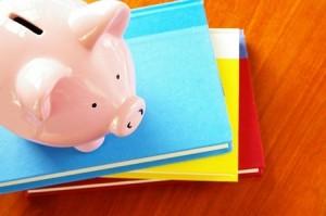 Persoonsgebonden Budget en personal organizer